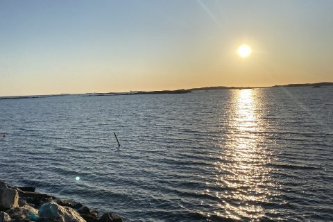 Hyra Segelbåt Sverige